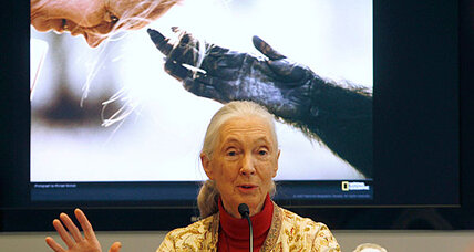 Jane Goodall apologizes for plagiarizing in new book