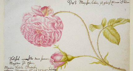 Maria Sibylla Merian: Inspired her love of nature and art in her daughters