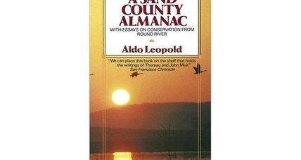 a sand county almanac summary and analysis