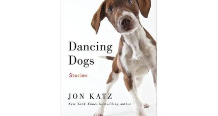 Reader recommendation: Dancing Dogs