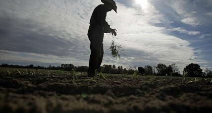 Immigration reform: Farm-worker compromise brings bill a step closer to Senate floor