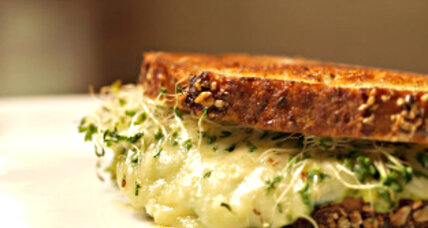 Avocado and alfalfa sprouts grilled cheese