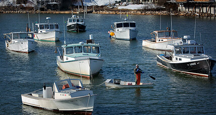 Blue crabs in Maine? Something fishy about global warming.