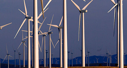 Why wind farms kill eagles with federal impunity