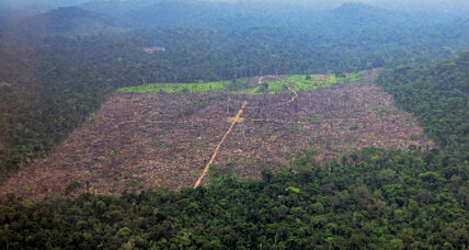 How better-trained farmers slow Brazil's deforestation