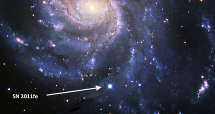 Bizarre supernova completely normal in every way, find astronomers