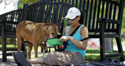 Fourth of July fireworks: Prep your dog for its least favorite holiday