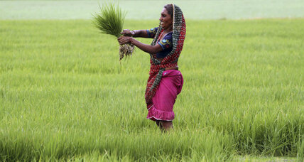 To combat hunger, give land rights to world's poor women