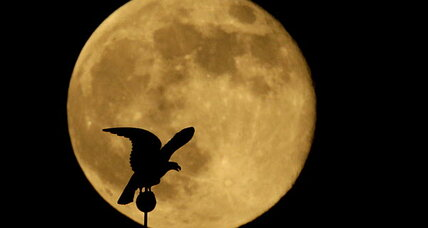 How the moon affects the nighttime world. (Hint: No werewolves.)