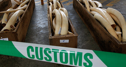As elephants vanish, Kenya puts Chinese ivory smuggler in prison (+video)