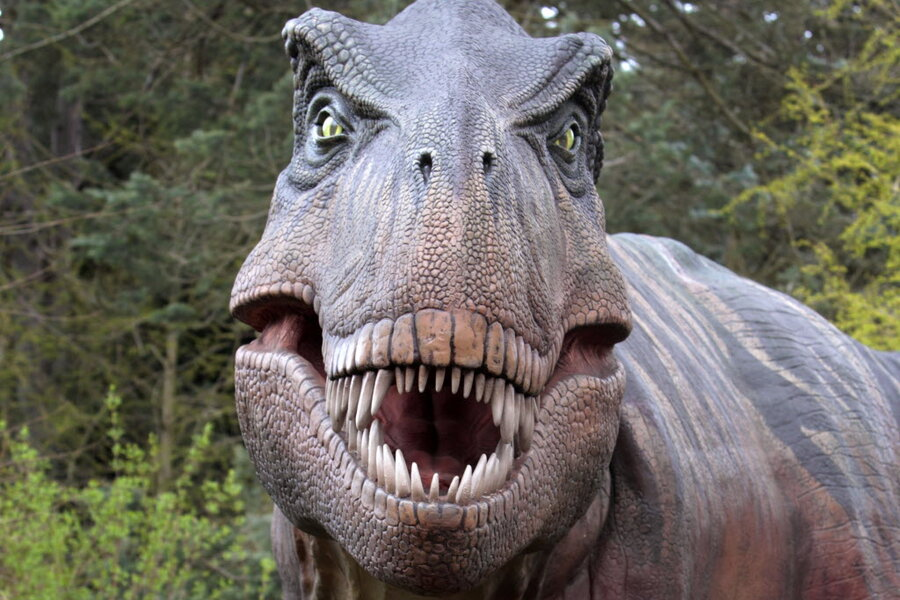 Real Dinosaurs T Rex Could you survive a di...