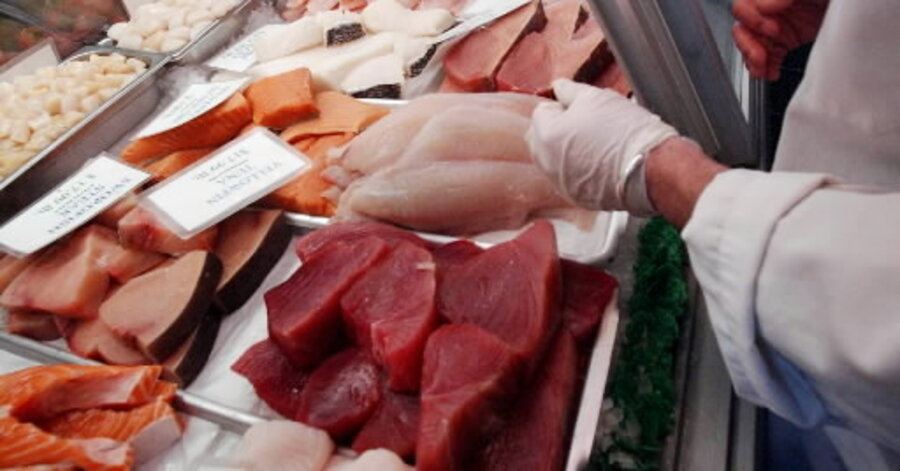 Why deep sea fish contain more toxic mercury than shallow