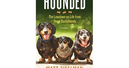 Reader recommendation: Hounded
