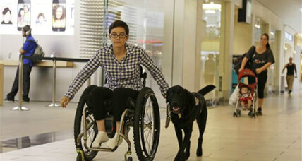 Impostor service dogs: Why would a dog owner do this?