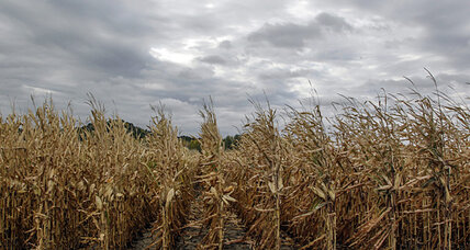 Renewable fuel standard: Are we nearing a compromise on ethanol?