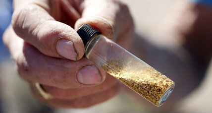 How trees drinking gold can help the mining industry