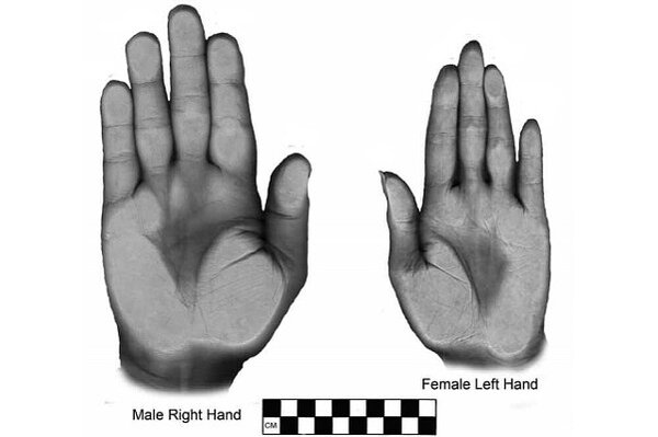 left hand single lesbian women Symbols of the gay, lesbian, bisexual, and transgender  and women's liberation  use the purple hand as a gay and lesbian.