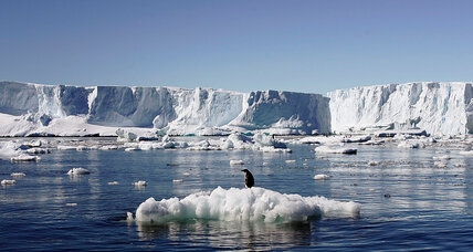 Antarctic reserve talks falter, delaying conservation efforts