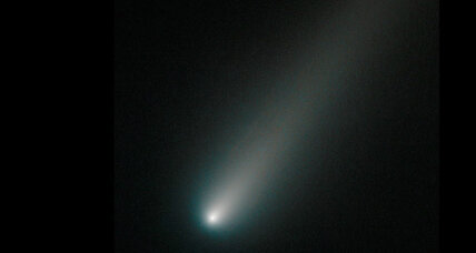 Comet with two tails? Comet ISON could provide fascinating spectacle.