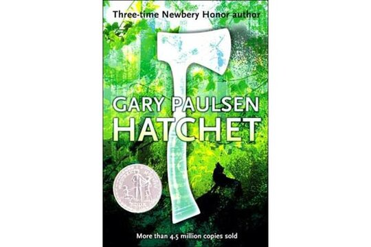 book report on hatchet by gary