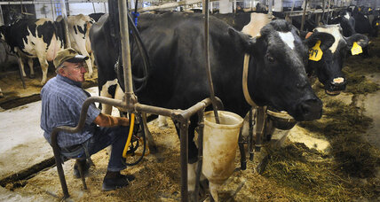 Milk for $7 a gallon? Farm bill impasse could send US off 'dairy cliff.'