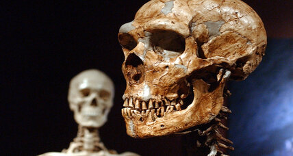 Your skin and hair are probably crawling with Neanderthal genes, say scientists