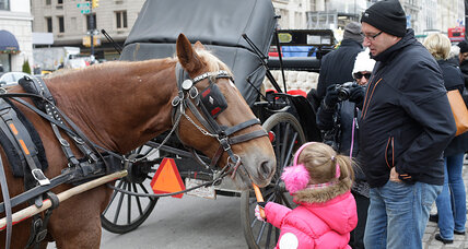 Carriage rides in de Blasio's New York: cocoa, blankets ... hold the horses