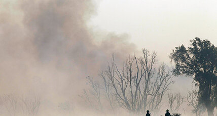 Smoky air puts spotlight on Chile's tree farms