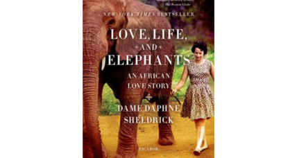 Reader recommendation: Love, Life, and Elephants