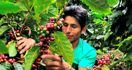 Coffee talk (and action): David Griswold uses empathy to get farmers a fair deal