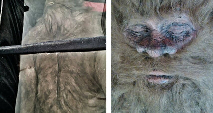 Bigfoot hunter claims to have shot, killed hirsute cryptid (+video)