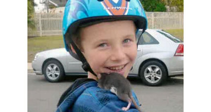 Infected rat: Keeping your kids safe with any pet