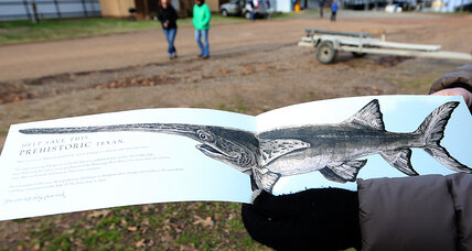 Caddo Lake: The open-mouthed dinosaur-era paddlefish is welcome back!