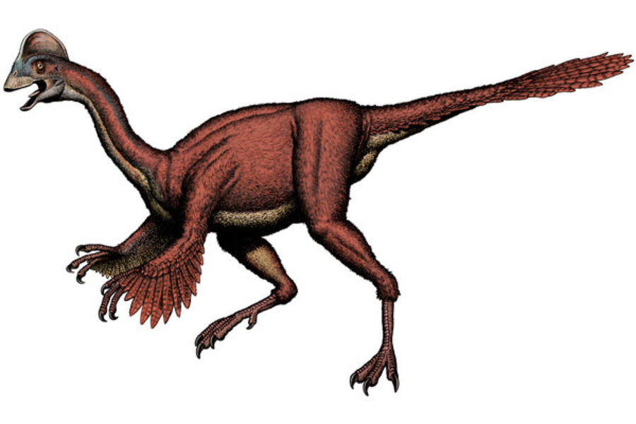 'Strange' dinosaur was closest thing to a bird without being one