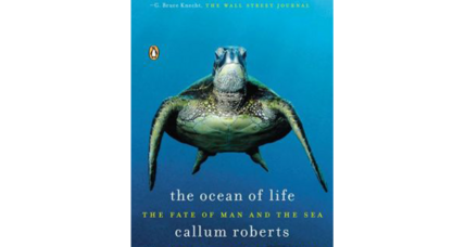 Reader recommendation: The Ocean of Life