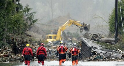 Washington mudslide: logging eyed as contributing cause