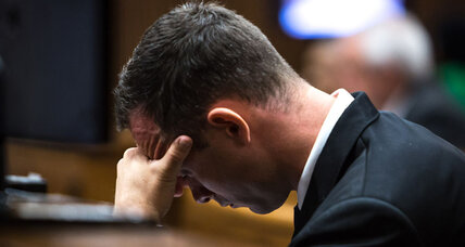 Oscar Pistorius trial: Firearms expert testifies to his love of guns (+video)