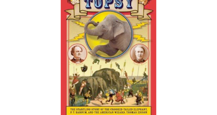 'Topsy' author Michael Daly discusses the unfortunate life story of a famous elephant