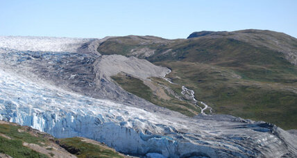 Ancient soil provides clue to Greenland's green past