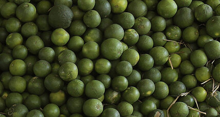 Lime shortage, high prices have airlines axing fruit from beverage service