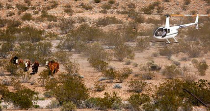 Nevada cattle wars: Nevada senator sides with rancher against feds