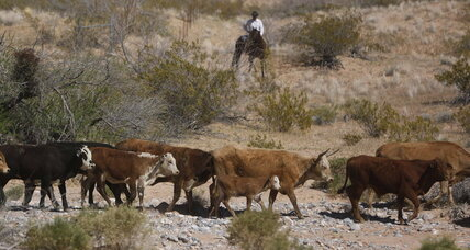Nevada rancher vs. federal agents: a very old conflict suddenly made new