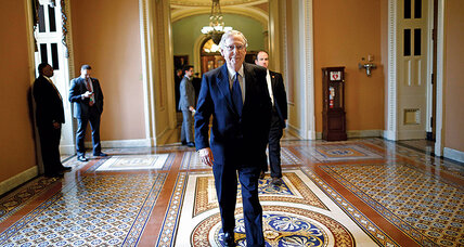Why Mitch McConnell, Senate's top Republican, is so vulnerable at home (+video)