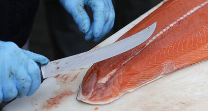 Is sustainable farm-raised salmon possible?