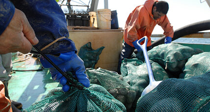 How one fisherman is getting produce directly to consumers