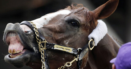 Kentucky Derby 2014: Six horses to watch, and then some
