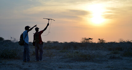 East Africa's elegant antelope on the verge of bowing out