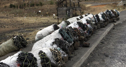 Terror group Al Shabab doesn't smuggle ivory for cash. It sells charcoal. (+video)