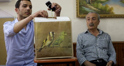 Among Istanbul's birdsong lovers, an echo of Greek past