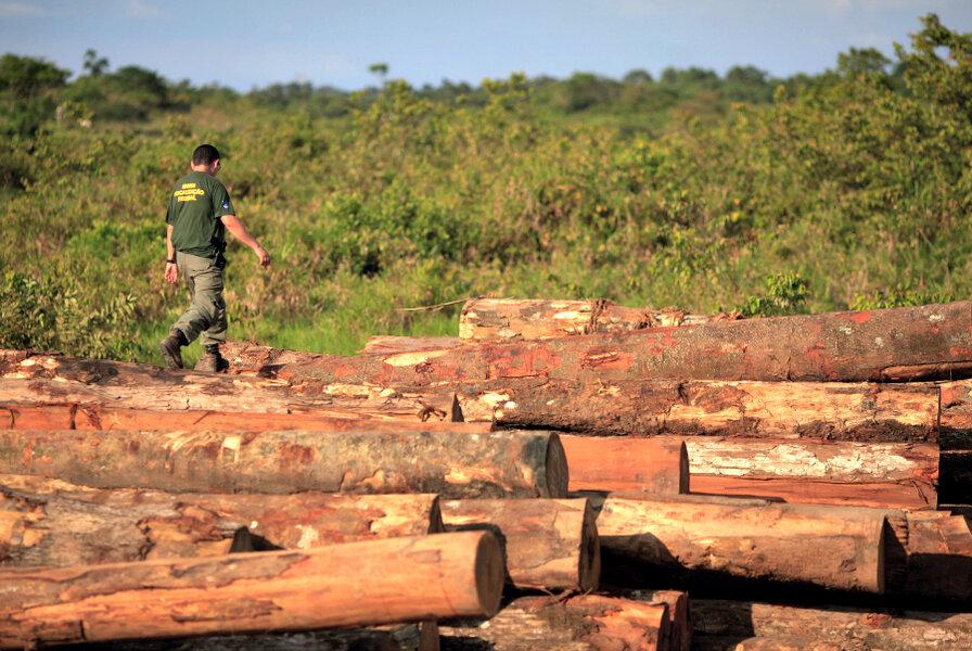 How satellite maps can halt Amazon deforestation - CSMonitor.com